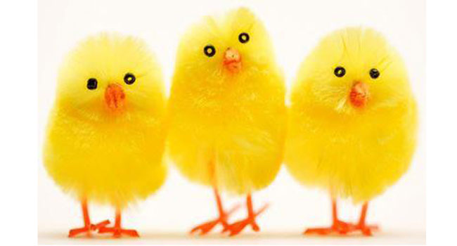 Have a lovely long Easter weekend Image