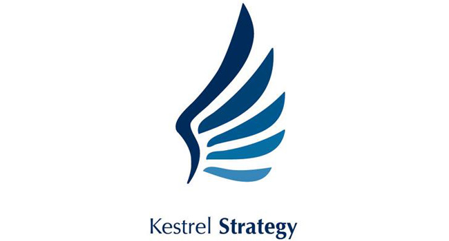 Striking new logo for Kestrel Strategy Image