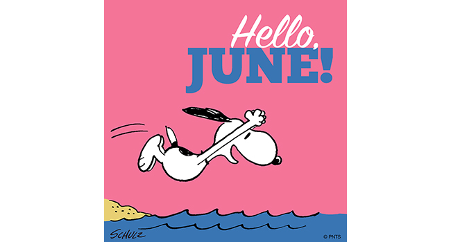 Hello June Image
