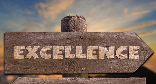 Excellence is like perfection Image