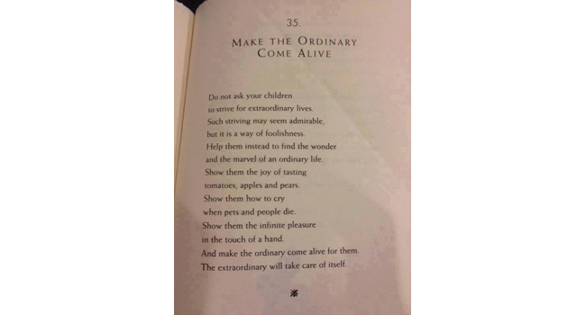 Make the ordinary come alive Image