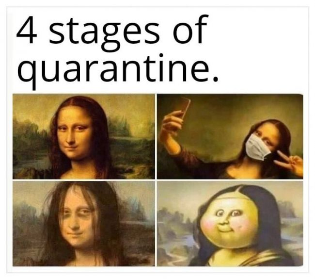 The 4 Stages of Quarantine Image